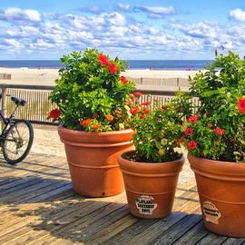 Carolyn Derstine - Boardwalk view