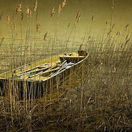 Randall Nyhof - Boat among the Reeds