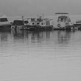 Zeljko Dozet - Boats On The River