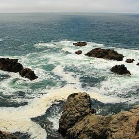 Sierra Vance - Bodega Bay