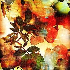 Robin EL-Hachem - Bokeh Blossoms
