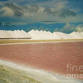 Jerome Stumphauzer - Bonaire Sea Salt