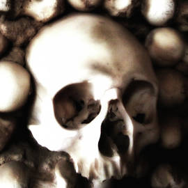 Philip Openshaw - Bone Dry