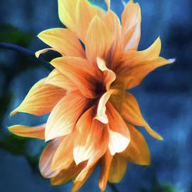 Jordan Blackstone - Book Of Days - Flower Art