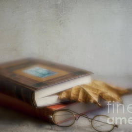 Elena Nosyreva -  Bookmark