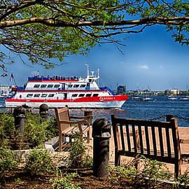 Tricia Marchlik - Boston Harbor View