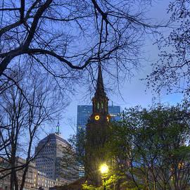 Joann Vitali - Boston Public Garden and Back Bay at Night