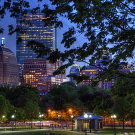Joann Vitali - Boston Skyline at Night from the Boston Common