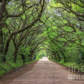 Michael Ver Sprill - Botany Bay Road