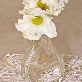 Bottled Begonia Flowers