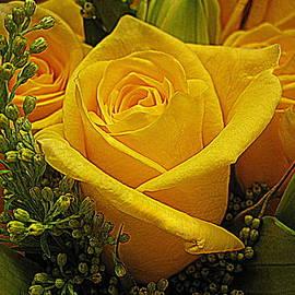 Bonita Brandt - Bouquet of Yellow Roses