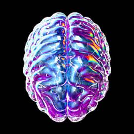 Crean Quaner - Brain_034