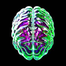 Crean Quaner - Brain_043
