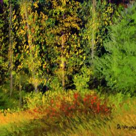 Denise Wagner - Fall woods at Whipple