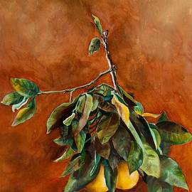 Branch of Grapefruit