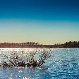 Jukka Heinovirta - Branches Sunken In The Lake