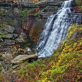 Marcia Colelli - Brandywine Waterfall