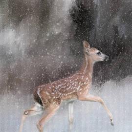 Jai Johnson - Braving Her First Snow - Whitetail Deer Fawn Art by Jai Johnson
