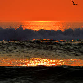 Dianne Cowen - Break of Dawn