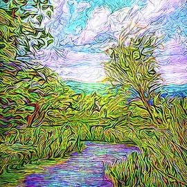 Joel Bruce Wallach - Breath Of The Indigo River