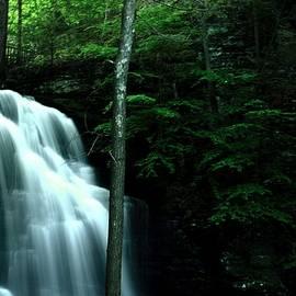 Srinivasan Venkatarajan - Bridesmaid Falls at Bushkill Falls