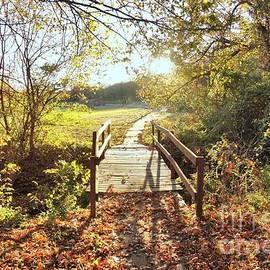 Janette Boyd - Bridge in Autumn