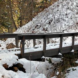 Nicholas Blackwell - Bridge Number 7