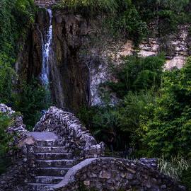 Liang Li - Bridge step