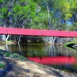 Thomas  Todd - Bridge through the Woods