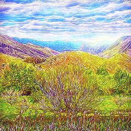Joel Bruce Wallach - Bright Field Morning