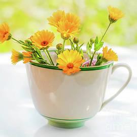 Yurii Agibalov - Bright orange bouquet from flowers of  calendula.