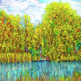 Joel Bruce Wallach - Bright Pond Moment - Lake In Boulder County Colorado