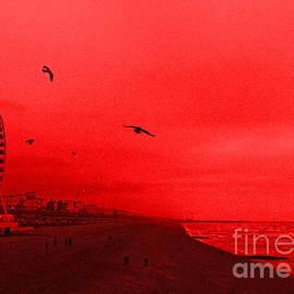 Callan Percy - Brighton Beach