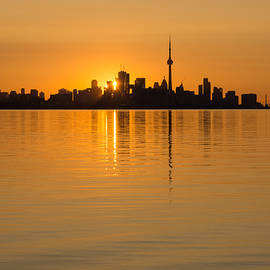 Georgia Mizuleva - Brilliant Golden Yellow Toronto Skyline
