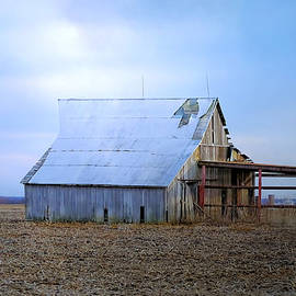Theresa Campbell - Broad Side Of A Barn