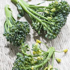 Broccoli florets - Elena Elisseeva