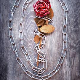 Svetlana Sewell - Broken Rose