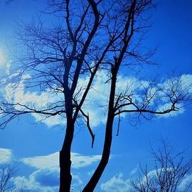 Debra Lynch - Broken Standing and Healing In The Sun