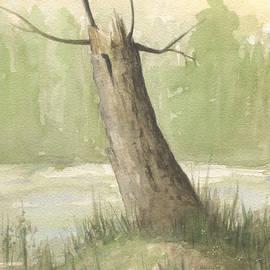 Broken Tree - John Holdway