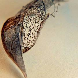 Alison Burford - Bronze Leaf