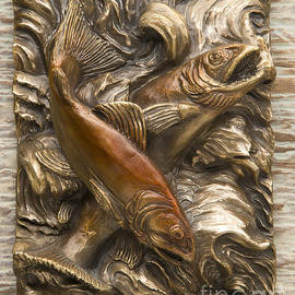 Dawn Senior-Trask - Brook Trout - Bronze Relief