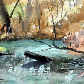 Sof Georgiou - Brookfield Creek, Brisbane Australia