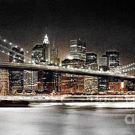 Gull G - Brooklyn Bridge