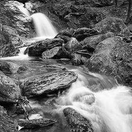 Dave Schmidt - Brush Brook