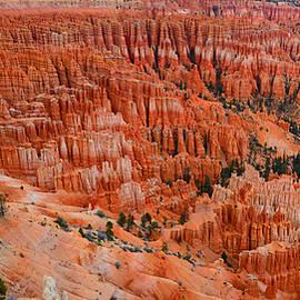 Raymond Salani III - Bryce Canyon Megapixels