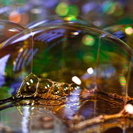David Patterson - Bubble Landscape
