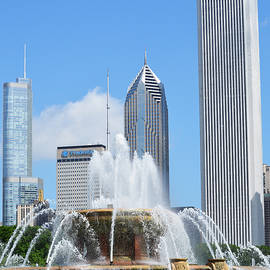 Richard Andrews - Buckingham Fountain 3
