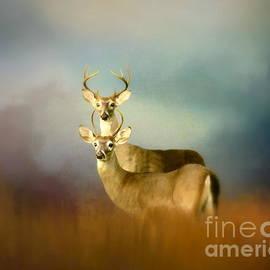 Myrna Bradshaw - Bucks In The Meadow
