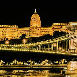 Lisa Lemmons-Powers - Buda Palace and Chain Bridge Nightscape