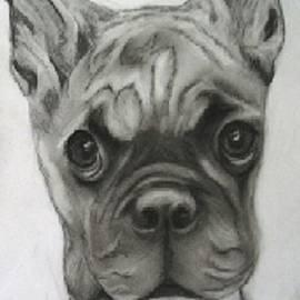 Jacquie King - Buddy Bulldog